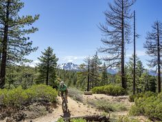 If you're looking to turn up the volume in the adrenaline category, consider trying one of these Lake Tahoe mountain bike trails. Best Mountain Bikes, Mountain Bike Trails, Mountain Style, California Places To Visit, Southern California, Alpine Meadow, Trail Guide, South Lake Tahoe, Mountain Landscape
