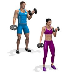 Exercises for workout in masculine and feminine version
