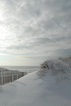 Winter beach. I can almost feel the cold, fresh air in my lungs when I look at this. Time for a drive to the Cape.