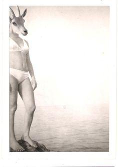 MAMMALIA CHIARA DIONIGI Collage digitale  Mettendo in ordine vecchie foto di famiglia ho pensato di modificarle, sostituendo i volti con teste d'animale. I bambini vedono il mondo con un occhio diverso, alla rovescia , ciò che apparentemente per un adulto può sembrare fantastico per un bambino può benissimo essere vero e reale.