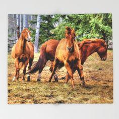 Horse Play Throw Blanket