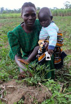 https://flic.kr/p/pRiYkp | Visiting Mama SASHA Participants, Western Kenya (Credit: S. Quinn, CIP)