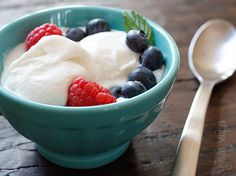 Low Fat Vanilla Bean Frozen Yogurt