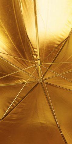 Gold | ゴールド | Gōrudo | Gylden | Oro | Metal | Metallic | Shape | Texture | Form | Composition | umbrella