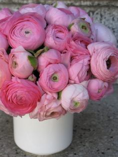 ranaculus , I have a small plant of these that produces 3 flowers max, I wish it would more!