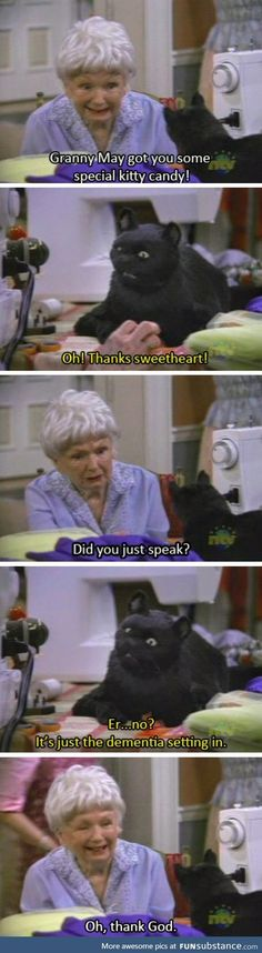 Salem from Sabrina the Teenage Witch had no chill - Tap the link now to see all of our cool cat collections!