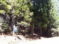 View property details for 5373 Wooded Glen Road, Grizzly Flats, CA. 5373 Wooded Glen Road is a Lots/Land property with 0 bedrooms and 0 baths priced at $10,900. MLS# 15072207.