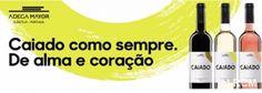 Campomaiornews: Vinho Caiado, da Adega Mayor, surge no mercado com...