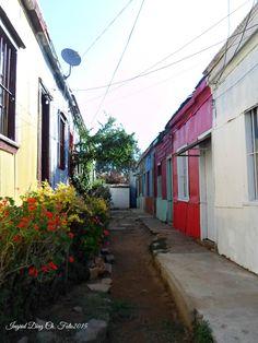 Tìpico pasaje de la zona centro del país.  Toro Herrera, Recreo, Viña del Mar