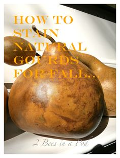 How to stain natural gourds for Fall. By adding just a little bit of stain, it preserves and enhances the natural markings on the gourds. The paste was gives a slight sheen.