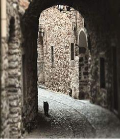 Εμπνεύσεις-Δημιουργίες-Μεταμορφώσεις: Περιπλανομενο... Chios