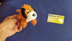 Dicas do Gilson Eletricista: Contos do Gilson Eletricista: A despedida do cacho...