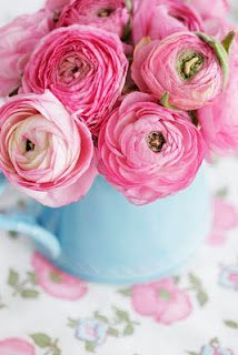 Ranunculus in coloured tin can