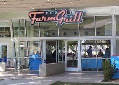 Joe's Farm Grill in Gilbert, AZ--home grown 50's meet 2011 burger + everything place