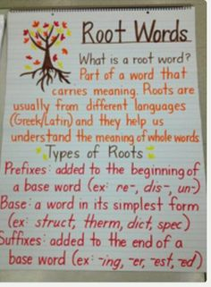 Root Words Anchor Chart