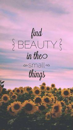 Trova la bellezza nelle piccole cose