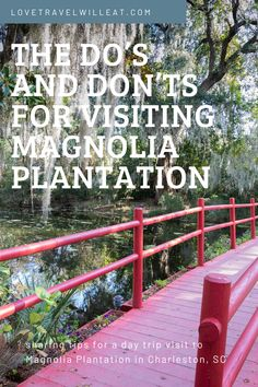 Tips for a day trip to Magnolia Plantation near Charleston, South Carolina. #MagnoliaPlantation #Charleston #SouthCarolina #USDestinations #Travel #traveltips