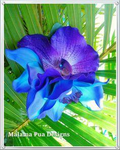 BRIDAL HAIR FLOWER, Hawaiian Orchids, Maui Blue, Purple, Flower Hair Clip, Beach Bride, Fascinator, Flower Headpiece,Wedding Hair Accessory