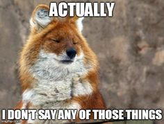 What does the fox say? Actually, I don't say any of those things. OMG I laughed so hard at this!