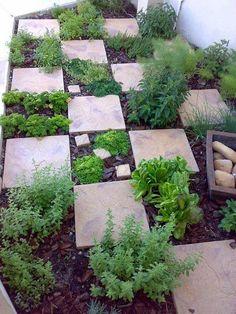 Stone tiles in the garden create an easy walkway.