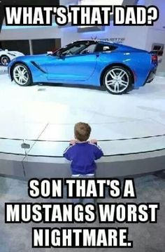 LOL, I love Mustangs, but I love the C7 Stingray even more. Although, this is…