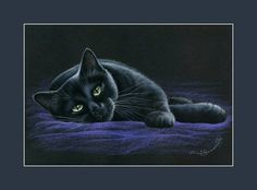 Black Cat On Purple by Irina Garmashova