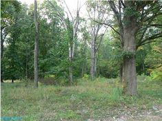 Price: $139,000, #: 213035692 Lot for Sale. Gahanna Jefferson School District. Build your dream home here. http://www.lori-hicks.com/