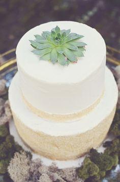 succulent-topped wedding cake // photo by Amy Wallen // view more: http://ruffledblog.com/woodland-bohemian-wedding-ideas