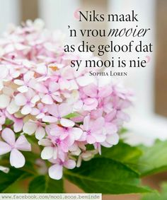 Inspiring Quotes About Life, Inspirational Quotes, Afrikaanse Quotes, Printable Quotes, Positive Thoughts, Woman Quotes, Words, Proverbs, Daisy