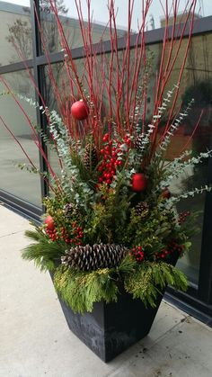 Winter, Container, Planter, spruce tips, dogwood, pine cones, Christmas