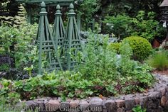 Vegetable tuteurs | Harmony in the Garden