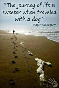 Life with a dog is sweeter :)