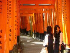Kioto:desde el Palacio Imperial hasta el templo Kamigamo Shrine  http://www.culturamas.es/ocio/2012/05/20/kioto-desde-el-palacio-imperial-hasta-el-templo-kamigamo-shrine/