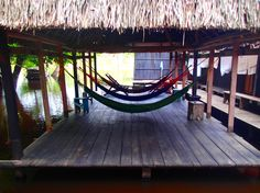 An eco-lodge in the heart of the Madidi National Park. The jungle 'la selva' / rainforest is south and west of Rurrenabaque.