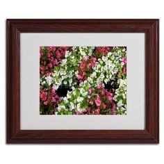 "Trademark Art ""Begonia Garden"" by Kathie McCurdy Framed Photographic Print Size: 11"" H x 14"" W x 0.5"" D, Frame: Brown - Beveled"