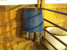 Best Slow Feeders For Horses…