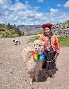 Uros islands. Titicaca. Peru  smiling lama