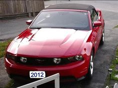 Used Ford Mustang GT Cars [Automobiles] with Red color
