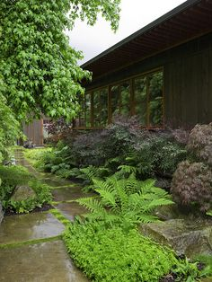 Modern Landscape Design, Pictures, Remodel, Decor and Ideas - page 22