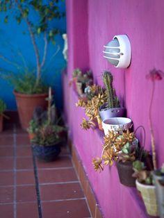 Casa Chaucha- Mexican pink!