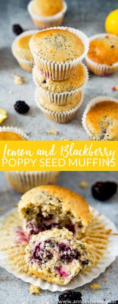 Soft and fluffy Lemon and Blackberry muffins filled with crunchy little poppy seeds; the perfect, flavour filled way to kick start your day!