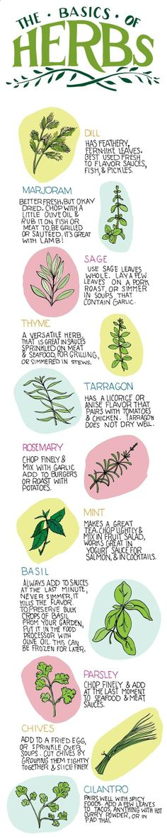 I would love a print of this in my kitchen | cooking with herbs -- mind body green