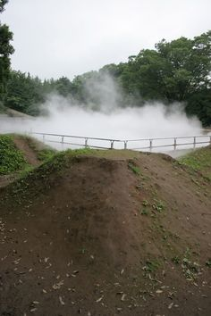 The Misty Forest, Showa Kinen Park, Tokyo. A large swimming pool like machine creates fog every 15 minutes which slowly drifts through the woods – to get lost and play in., Tokyo, Showa Kinen Park | Dismal Garden.  Very Dreamy!