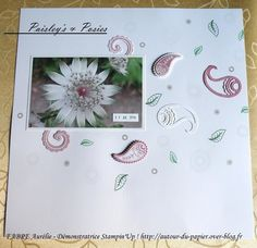 Papier : 12 x 12 Murmure Blanc, A4 Sorbet aux prunes et Murmure Blanc. Encres…