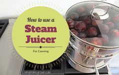 Learn the pros and cons of using a steam juicer in canning and preserving. Healthy Blender Recipes, Juicer Recipes, Canning Recipes, Fruit Recipes, Jelly Recipes, Smoothie Drinks, Smoothie Recipes, Steam Juicer, Rhubarb Juice