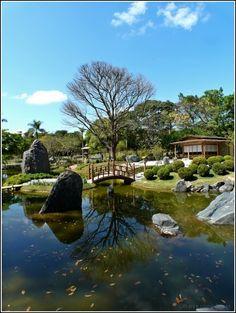 Jardim Japonês - Fundação Zoo Botânica - Belo Horizonte| Fotografia de Rodrigo Dias | Olhares.com