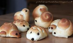 Hedgehog snails turtle animal shaped yeast dinner rolls