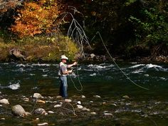 Mckenzie Fly Fishing by Boyd Miller, via Flickr