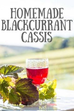 Liqueur/ Got an allotment? Then you need this homemade blackcurrant Cassis recipe. End of story :) recipes Easy Drink Recipes, Coffee Recipes, Cocktail Recipes, Real Food Recipes, Cocktails, Alcoholic Beverages, Simple Recipes, Fruit Recipes, Dessert Recipes