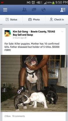 Texas Animal Abuser - Please share - This is all the info there was